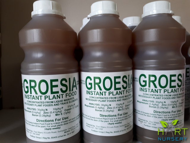 groesia-instant-plant-food