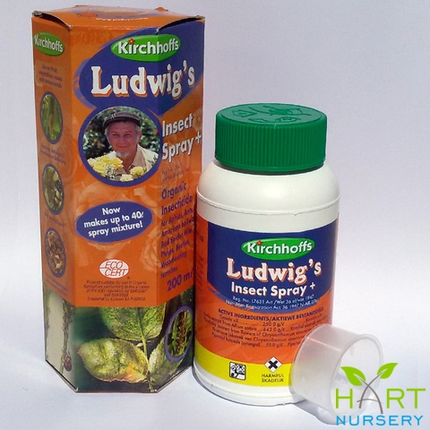 kirchhoffs-ludwig&#039s-organic-insecticide-spray