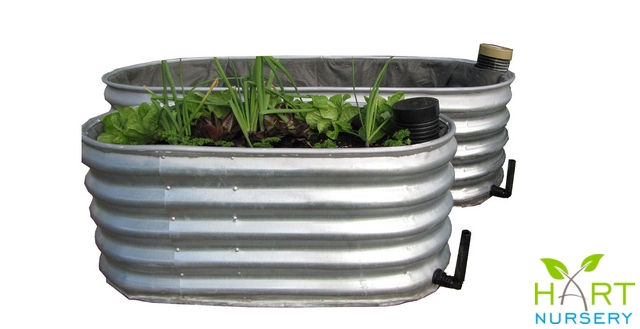 organic-kitchen-garden-planter